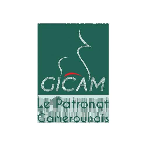 Le Gicam logo
